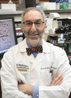 David H. Gutmann, MD, PhD in the research laboratory